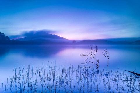 Bình minh sương xanh – Hồ Suối Vàng, Đà Lạt