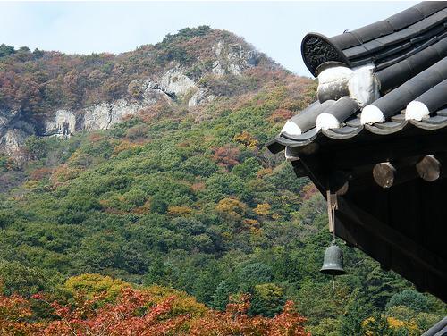 Khám phá thiên nhiên tươi đẹp Hàn Quốc qua Khí