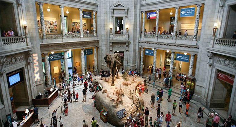 Các điểm tham quan và vui chơi ở Washington thu hút khách bậc nhất