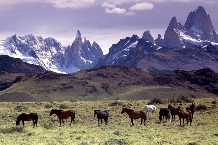 andes10