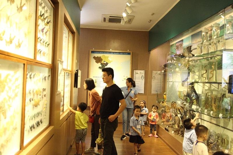 bảo tàng thiên nhiên Việt Nam