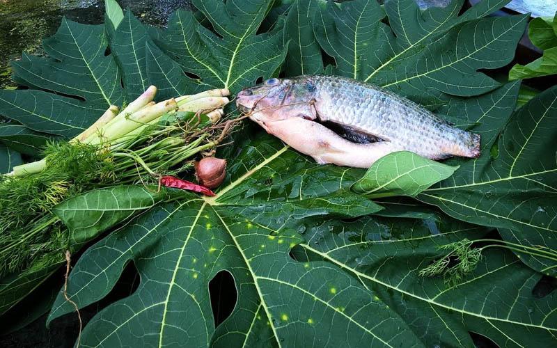 Lạ mà ngon món cá đồng hấp đu đủ
