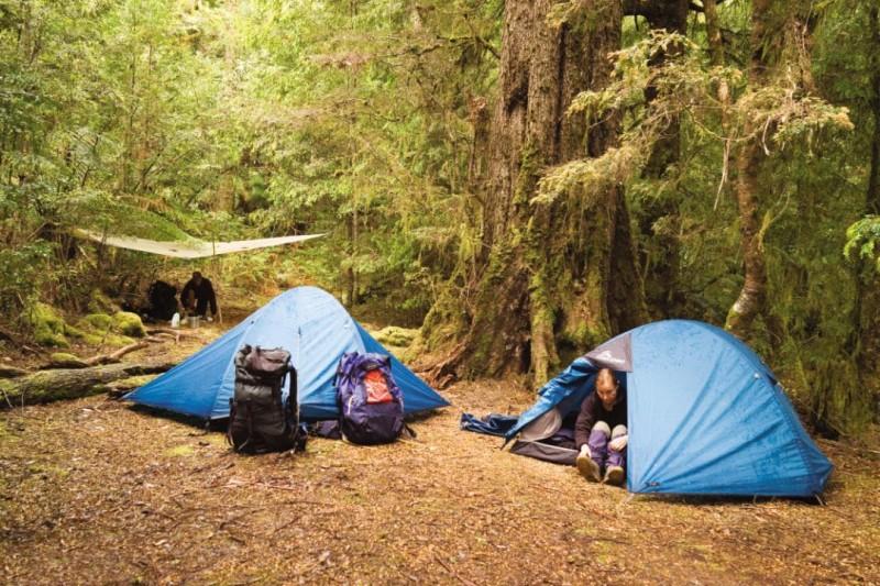 Cắm trại ở vườn quốc gia Tam Đảo là một trải nghiệm thú vị và đáng nhớ