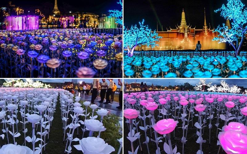 Thắp sáng Cánh đồng Hoàng gia Thái Lan chào mừng nhà vua đăng quang