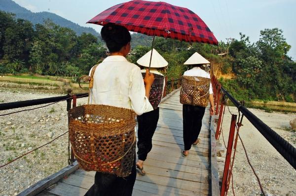 Những chiếc cầu treo đáng sợ nhất Việt Nam13