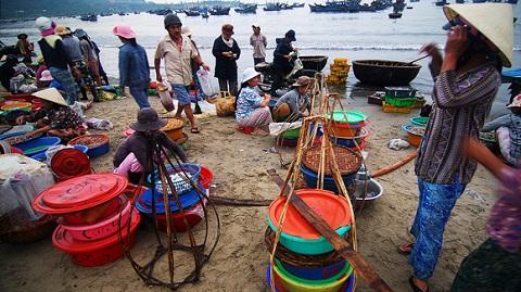 """""""Chợ"""" hải sản thu nhỏ trên bờ biển"""