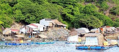 Thương lắm đảo nghèo