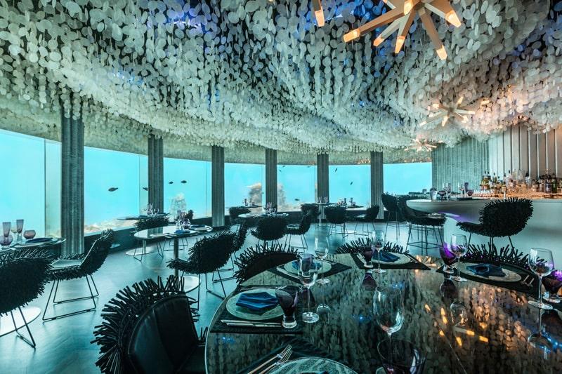 Quầy bar được thiết kế giống như một vỏ trai khổng lồ, các ghế ngồi được tạo hình như những con nhím biển