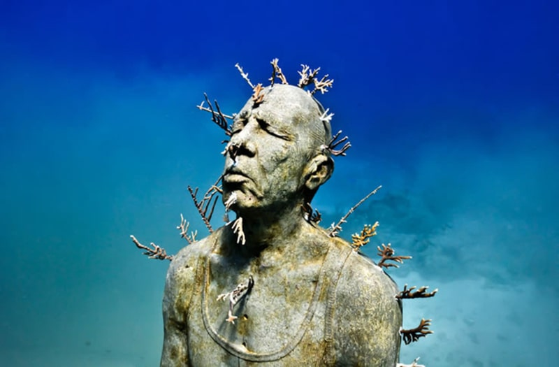 1 Sau một thời gian những tác phẩm điêu khắc là nơi các sinh vật biển cư trú