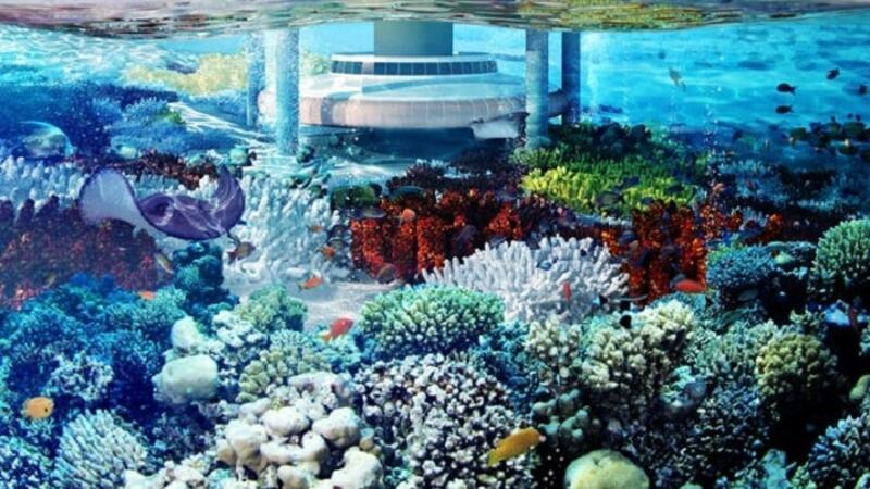 Phần chìm dưới nước biển có cấu trúc kiềng ba chân cố định phần chìm chặt dưới đáy biển