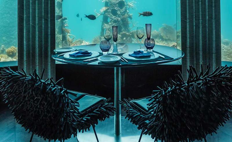 Tại Subsix bạn có thể thưởng thức các món ăn ngon đồng thời có thể ngắm các sinh vật biển