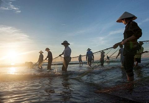 Cần mẩn, từng chút một họ đưa những mẻ cá tươi vào bờ