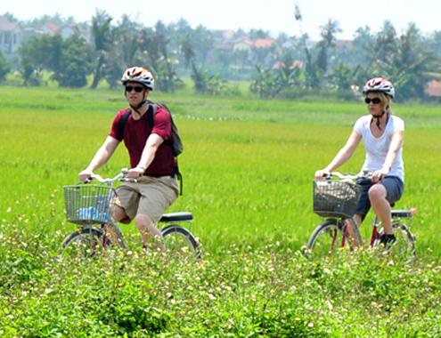 Khách Tây khám phá đồng ruộng Việt Nam2