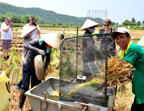 Khách Tây khám phá đồng ruộng Việt Nam5