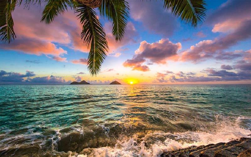 Kết quả hình ảnh cho Hawaii