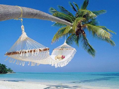 Móc võng trên thân dừa để ngủ quả là cảm giác thật tuyệt