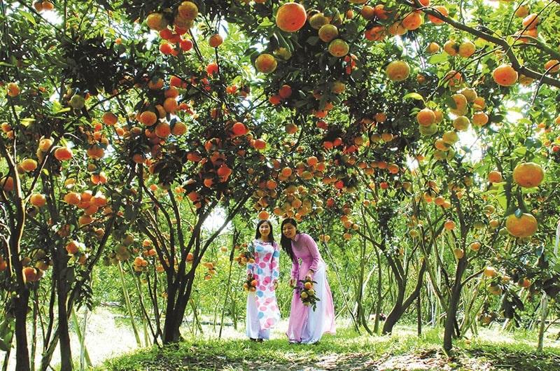 Đến Mỹ Tho thưởng thức trái cây và nghe đờn ca tài tử