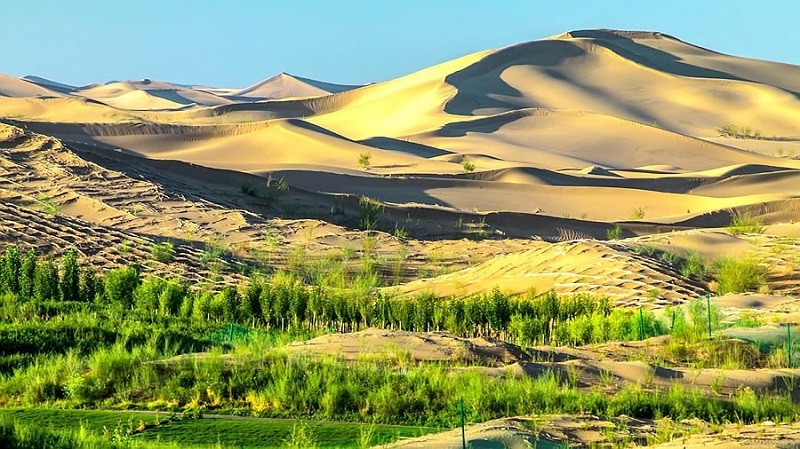 5N4Đ khám phá Nội Mông - theo vó ngựa Thành Cát Tư Hãn về miền thảo nguyên xanh