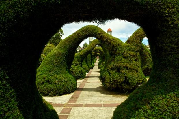 Parque Francisco Alvardoa