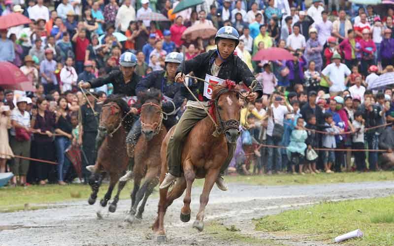 Festival vó ngựa cao nguyên trắng Bắc Hà