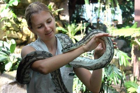 Bạn cũng có thể thử cảm giác để một chú rắn đu trên vai mình