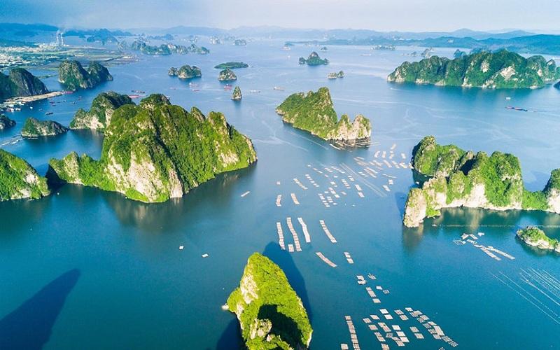 Vẻ đẹp của vịnh Hạ Long làm say lòng lữ khách xa gần