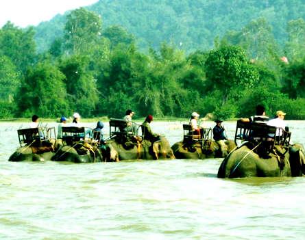 Hồ Lắk - huyền thoại trên cao nguyên đất đỏ