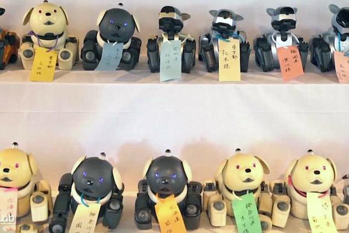 ky-la-ngoi-chua-lam-dam-tang-cho-hang-tram-chu-cho-robot-o-nhat-ban-2