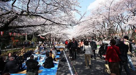 Công viên Ueno ở Tokyo