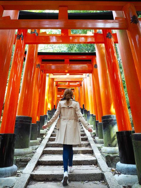 Đền ngàn cổng Shinto Shrines