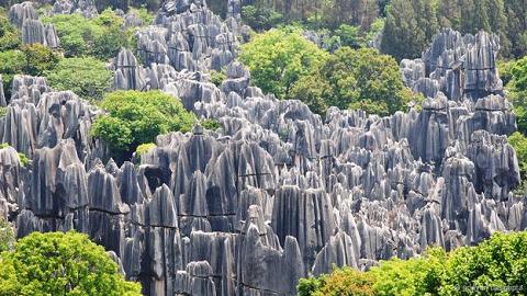 Rừng đá, Trung Quốc