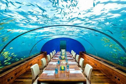Nhà-hàng-dưới-biển-Ithaa