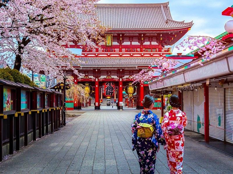 Trong hình là phong tục ngày Tết ở Nhật, rất thú vị