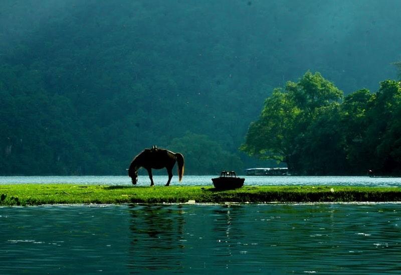 Vườn quốc gia Ba Bể có hệ sinh thái rất đa dạng
