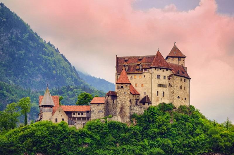 Lâu đài được bao phủ bởi thiên nhiên