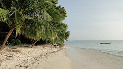 Đảo Havelock, quần đảo Amdaman, Ấn Độ