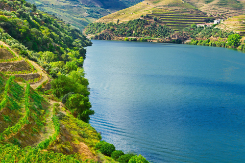 Thung lũng Douro