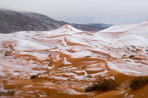 Trốn-đông-ở-sa-mạc-Sahara