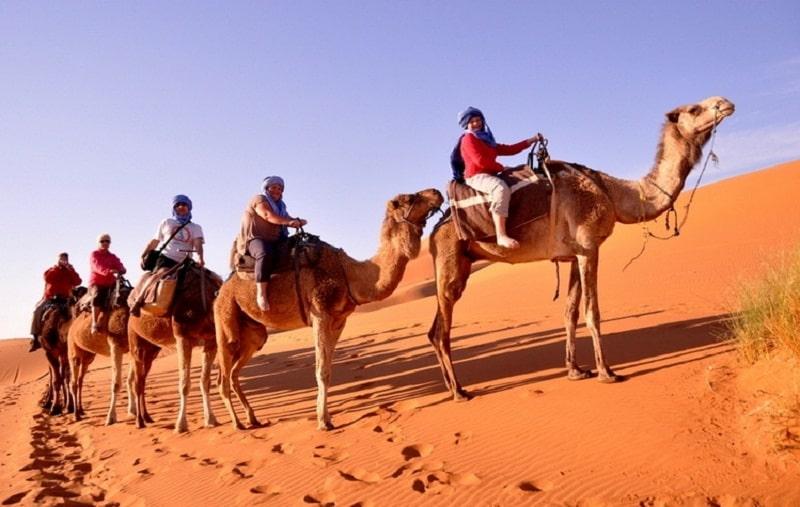 Du khách sẽ được trải nghiệm cưỡi lạc đà khi đến với sa mạc Doha