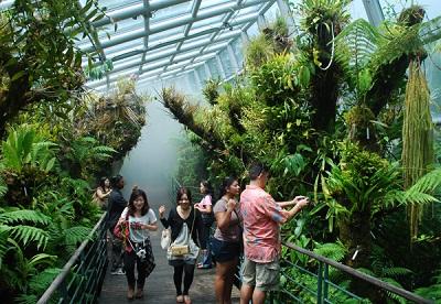Thời trang khi du lịch Singapore