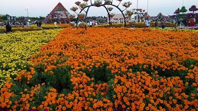 Mùa xuân Dubai