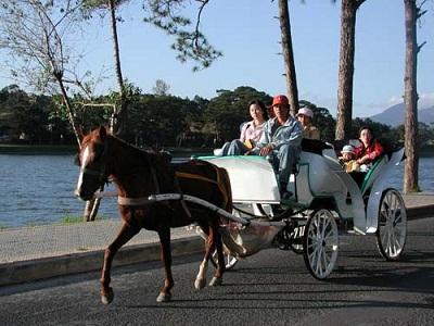 Du lịch Đà Lạt trên xe ngựa