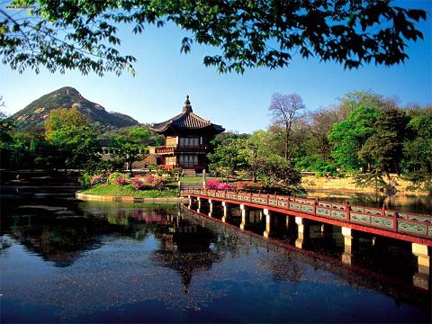 Dỡ bỏ khuyến cáo hạn chế đến Hàn Quốc để ngừa MERS