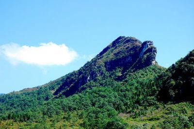 Điểm du lịch Sapa - Núi Hàm Rồng