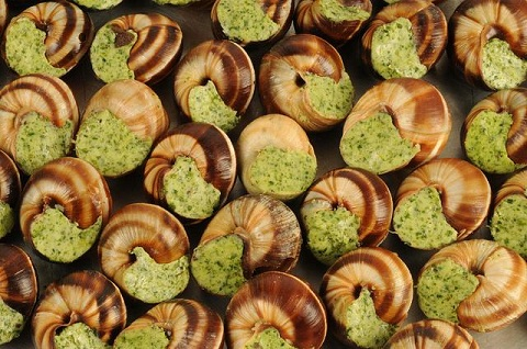 Ốc sên – món khai vị trong bữa ăn của người Pháp