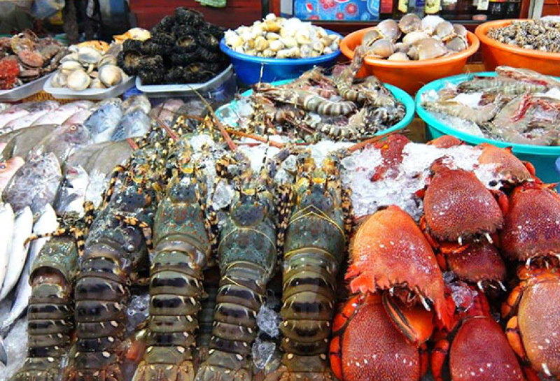 Hải sản đầy ấp của vùng biển