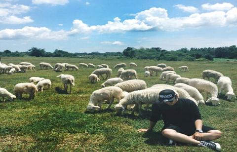 Đồng cừu ở Biên Hòa, Đồng Nai