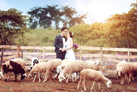 Nhiều bạn trẻ đến chụp ảnh cưới.