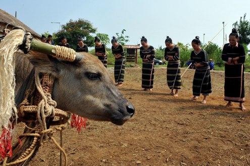 Những lễ hội dã man nhất Việt Nam