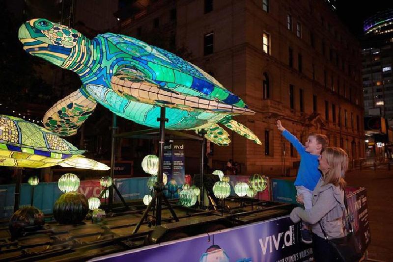 Đèn lồng ánh sáng hình chú rùa trên đường phố Sydney